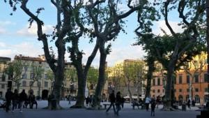 Piazza Napoleone dal Bar Stella Polare