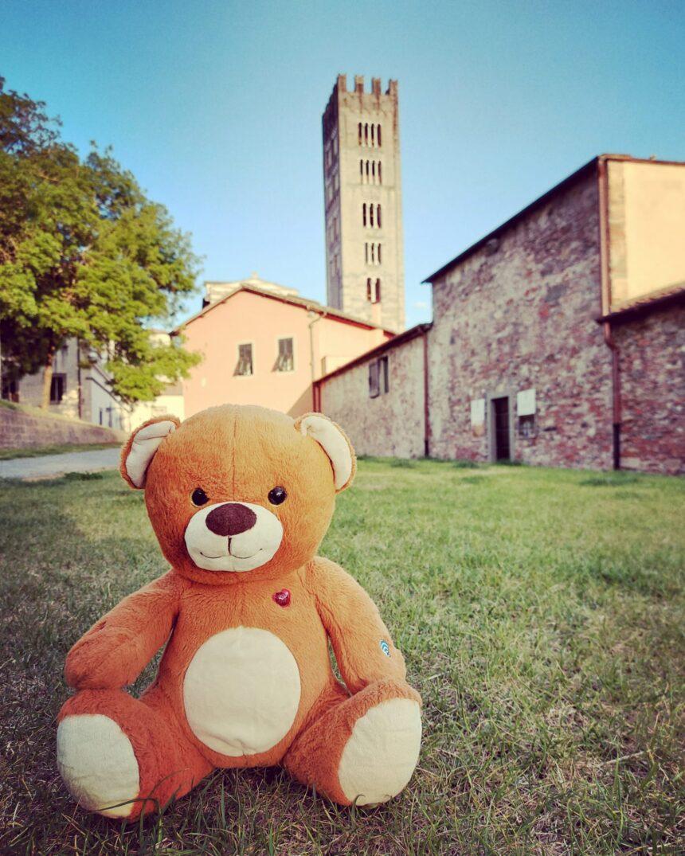 """Paddy, l'orsetto di """"unturistaalucca"""", ci racconta le sue avventure in città"""